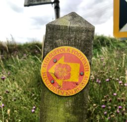 a red and yellow Mid Suffolk Footpath waymarker disc on an old wooden post in amongst grass and thistles