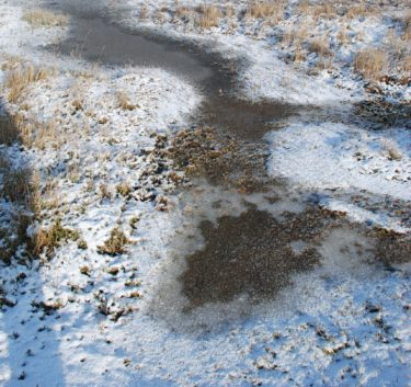 an icy puddle on a cold winter's day