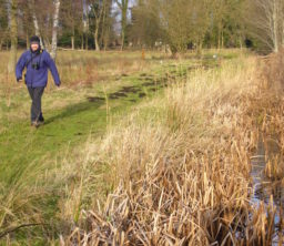 a person walking along a grassy path on the riverbank at Redgrave and Lopham Fen