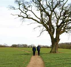 two people walking along a the Fynn Valley Path through a green field next to a large tree in winter