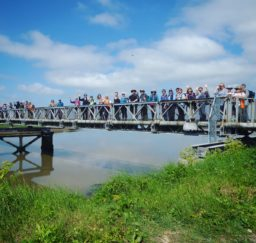 a large group of walkers spread out along the Bailey Bridge between Southwold and Walberswick on a sunny day