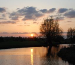 a golden and purple sunset reflected in the river at Flatford with trees silhouetted against the beautiful sky