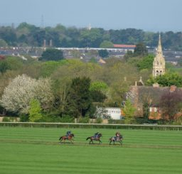 a view of three horses and jockeys on the Gallops at Newmarket, with a church spire and the roofs of houses in the background