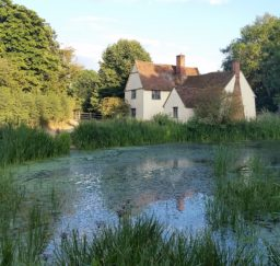 Willy Lotts Cottage at Flatford - a large white cottage with a red tiled roof surrounded by trees and overlooking a millpond edged with green reeds